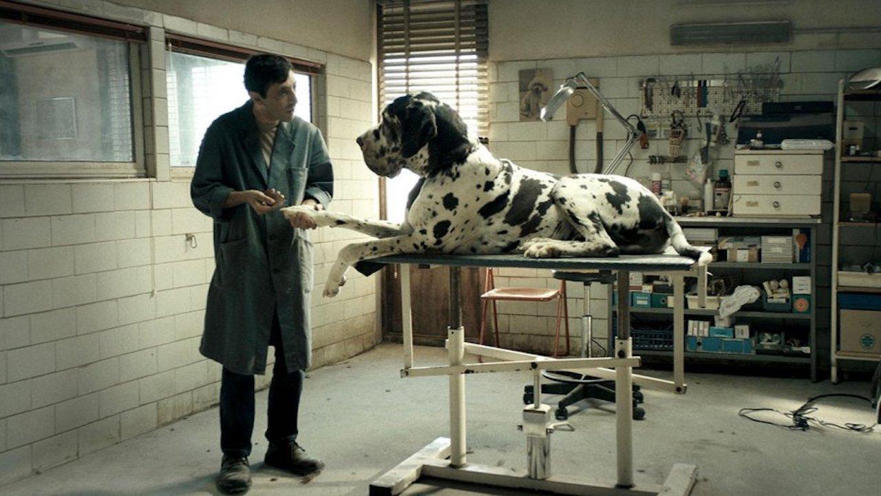 Imagem do filme 'Dogman'